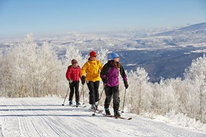 Ski Broker - Use code AllWinterPark and Save 25%!