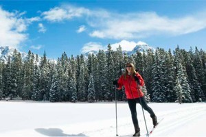 C Lazy U Ranch :: All-Inclusive dude ranch offering gourmet meals, luxury lodging, and over 10 miles of groomed and untracked cross country trails! All necessary equipment provided!