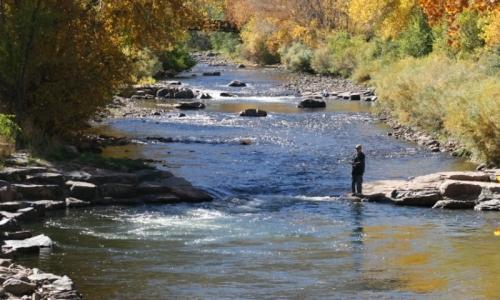 Fishing Clear Creek