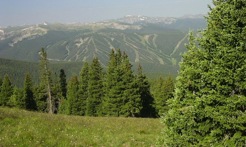 Winter Park Ski Area in Summer