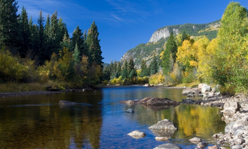 Roosevelt National Forest Colorado