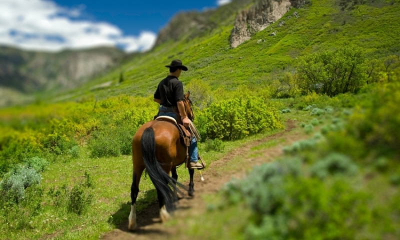 Horseback Riding Colorado