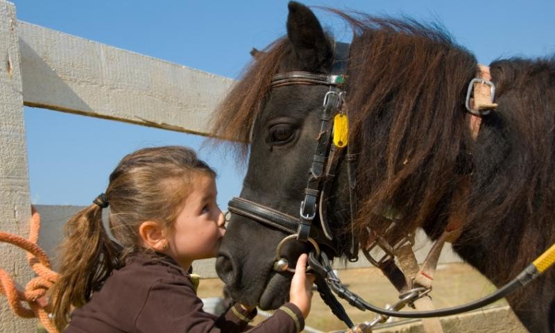 Winter Park Kids Horseback Riding