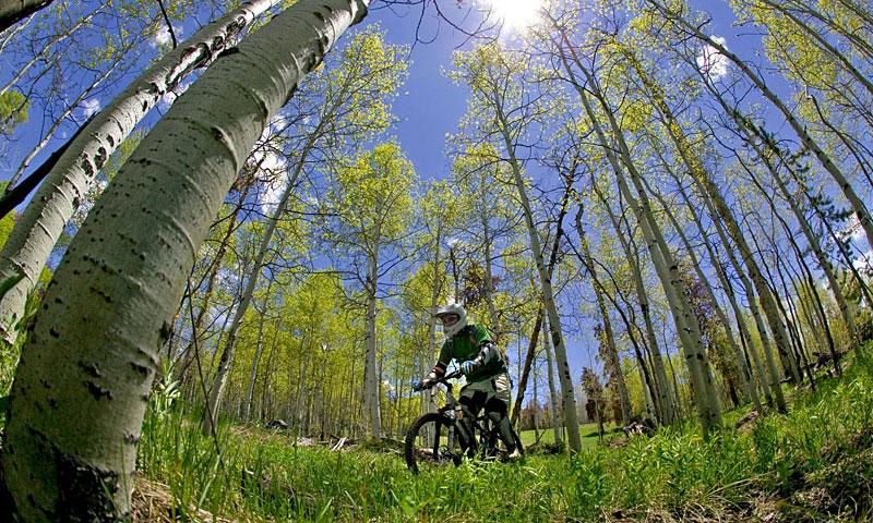 Biking at SolVista Bike Park