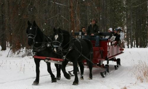 Sleigh Ride in Winter Park Colorado